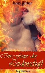 Im Feuer der Leidenschaft (Gay Romance)