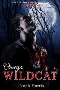 Omega Wildcat: M/M Werewolf Romance