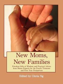 New Moms, New Families: Priceless Gifts of Wisdom and Practical Advice from Mama Experts for the Fourth Trimester and First Year Postpartum