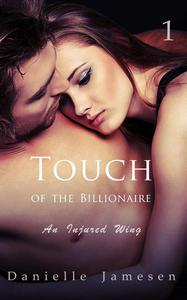 Touch of the Billionaire 1: An Injured Wing