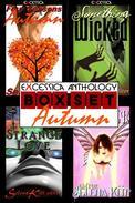 Excessica Anthology Box Set Autumn