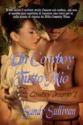Un Cowboy Tutto Mio