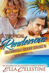 A Tropical Rendezvous: An Interracial Billionaire Summer Romance