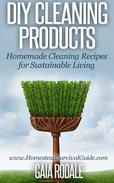 DIY Cleaning Products: Homemade Cleaning Recipes for Sustainable Living