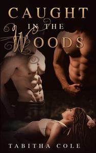 Caught in the Woods (Multiple partner, double penetration, public sex, watersports erotica)