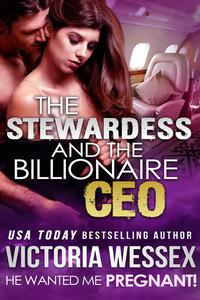 The Stewardess and the Billionaire CEO