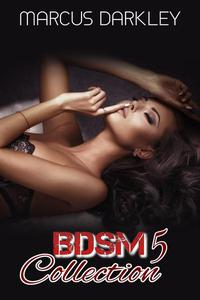 BDSM Collection 5