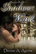 Shadows Wait (Asylum Trilogy Book 1)