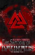 The Shadow of Bauhaus