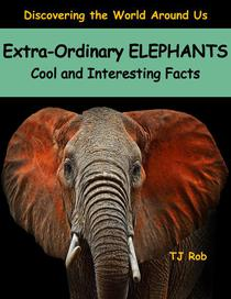 Extra-Ordinary Elephants