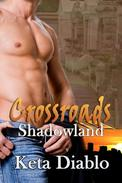 Crossroads Shadowland, Book 4