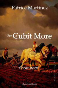 FOR A CUBIT MORE