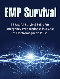 Emp Survival: 36 Useful Survival Skills For Emergency Preparedness in a Case of Electromagnetic Pulse
