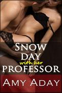 Snow Day with My Professor (Erotic Romance Story #1 - Rough Sex, Hardcore Sex and BDSM Sex Series)