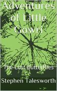 The Lost Butterflies