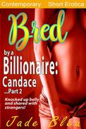 Bred by a Billionaire: Candace Part 2