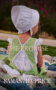 Amish Romance: The Promise