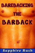 Barebacking the Barback (bisexual MMF menage)