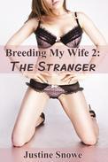 Breeding My Wife 2: The Stranger (Interracial Cuckold Voyeur Erotica)