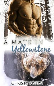 A Mate in Yellowstone