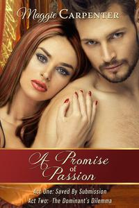 A Promise of Passion: Box Set