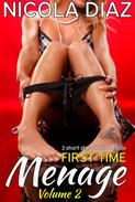 First Time Menage Volume 2- 3 short story book bundle