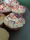 102 Cupcake Recipes