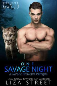 One Savage Night: A Savage Penance Prequel