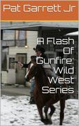 A Flash Of Gunfire: Wild West Story