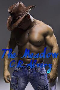 The Meadow (Gay Werewolf Billionaire Cowboy Multiple Partner)