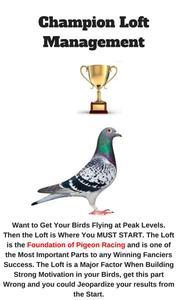 Champion Loft Management