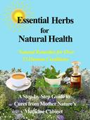 Herbal Remedies for Whole Body Health