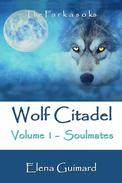 Wolf Citadel volume 1 - Soulmates