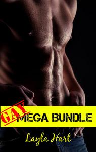 Gay Mega Bundle