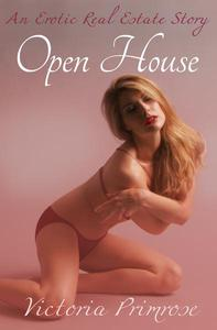 Open House: An Erotic Real Estate Story