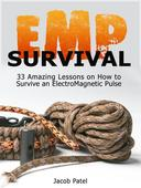 Emp Survival: 33 Amazing Lessons on How to Survive an ElectroMagnetic Pulse