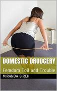 Domestic Drudgery