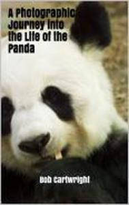 A Photographic Journey into the Life of the Panda