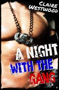 A Night With the Gang: A MMF Motorcycle Club erotic tale