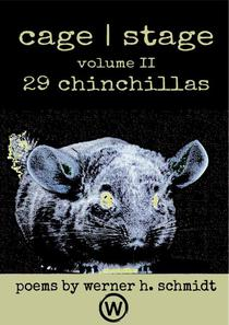 29 Chinchillas