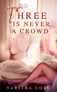 Three is Never a Crowd (Multiple partner, double penetration, Mmf bisexual orgy erotica)