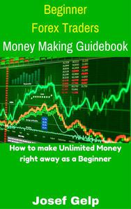 Beginner Forex Traders Money Making Guidebook