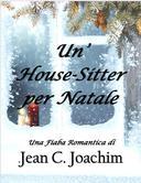 Un' House-Sitter per Natale