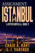 Assignment: Istanbul
