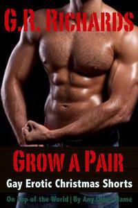 Grow A Pair: Gay Erotic Christmas Shorts