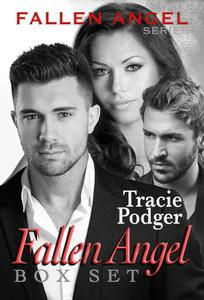 The Fallen Angel Series Box Set
