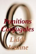 Punitions Conjugales