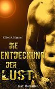 Die Entdeckung der Lust - 4 Bücher in einem Band!