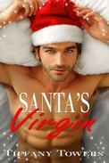 Santa's Virgin