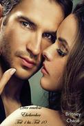 Der reuelose Ehebrecher Teil 1 bis Teil 10